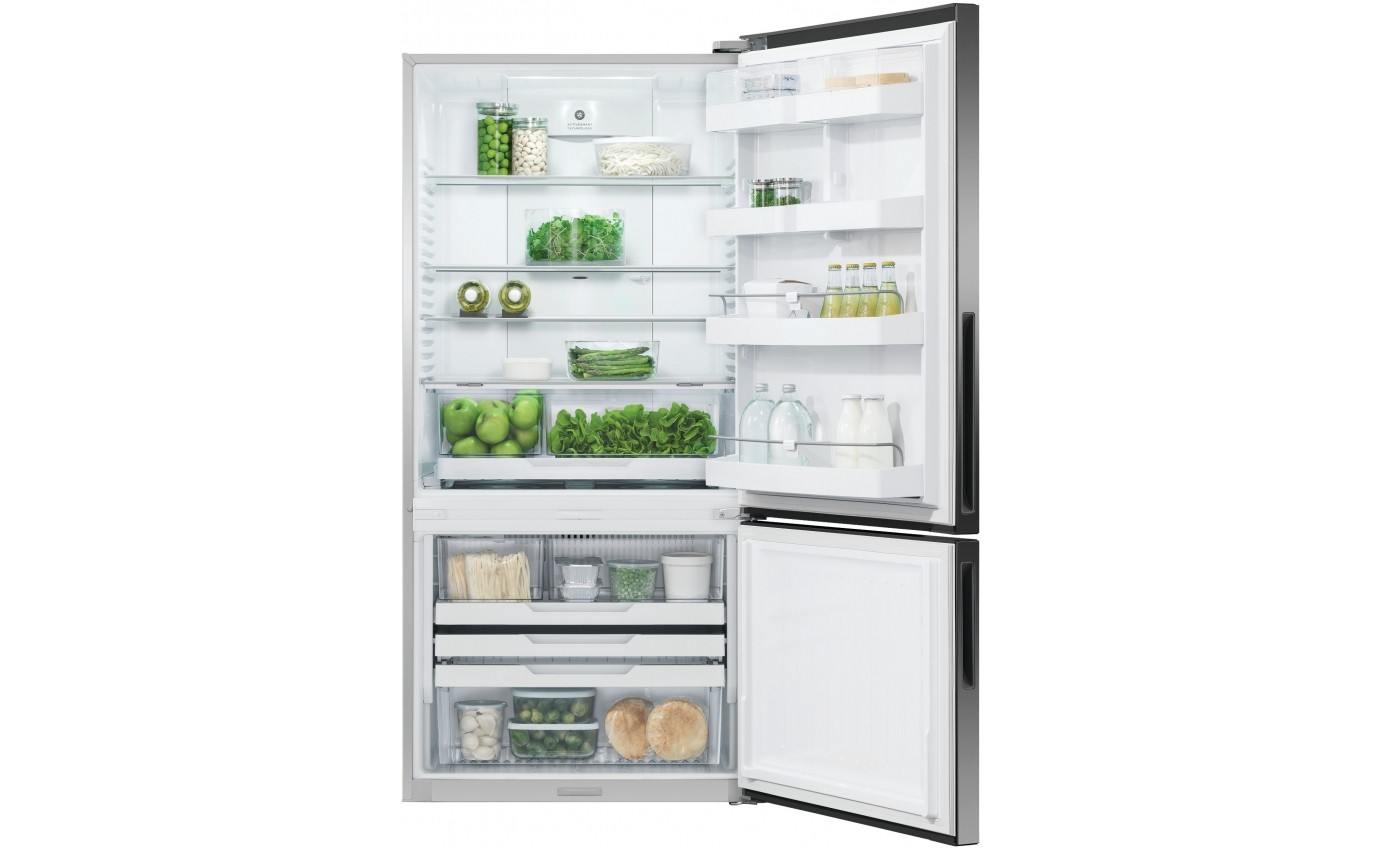 Fisher & Paykel 519L Bottom Mount Fridge RF522BRPB6